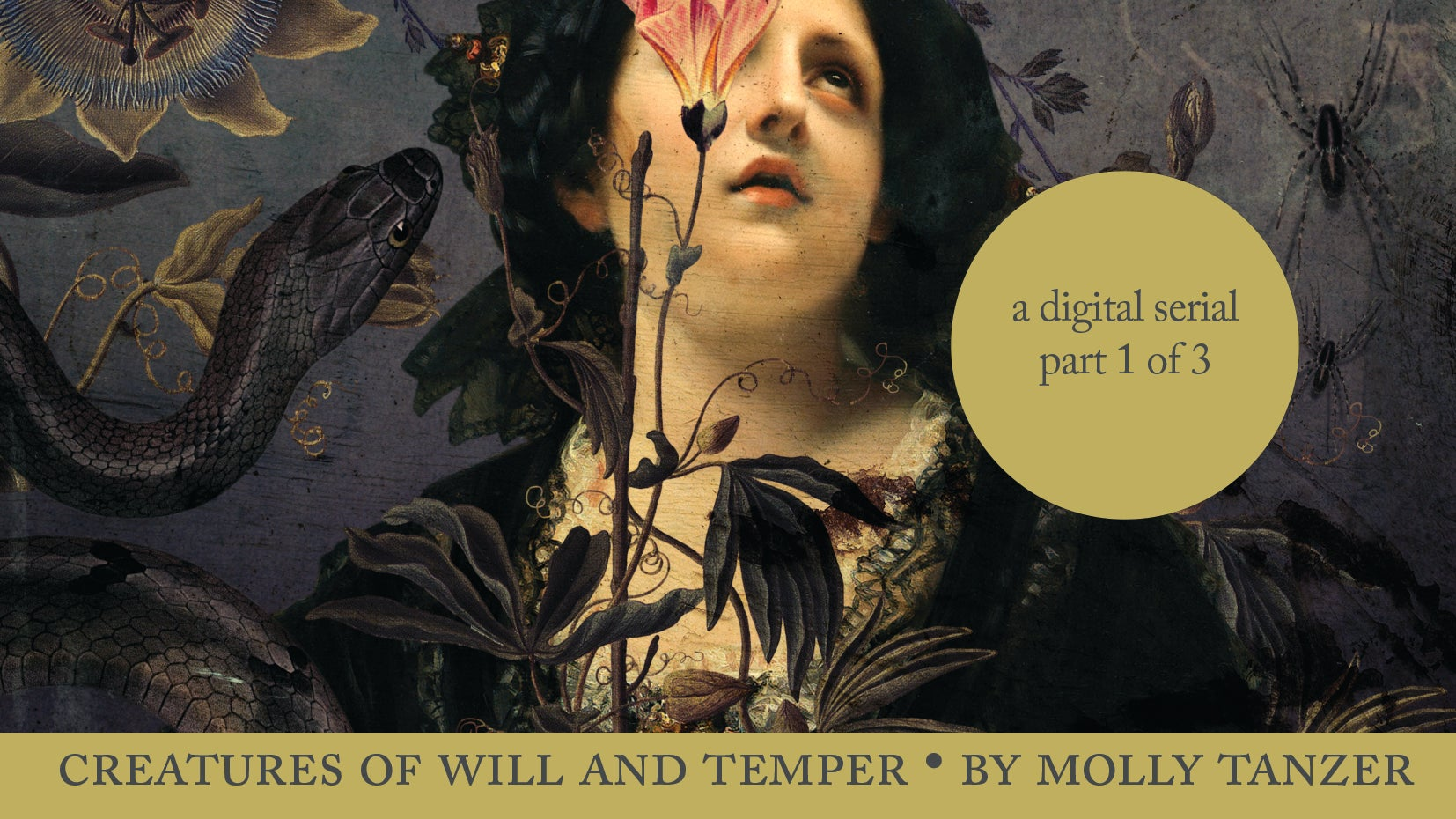 Hey, Free Book! Read The Victorian Fantasy Novel Creatures Of Will & Temper Here