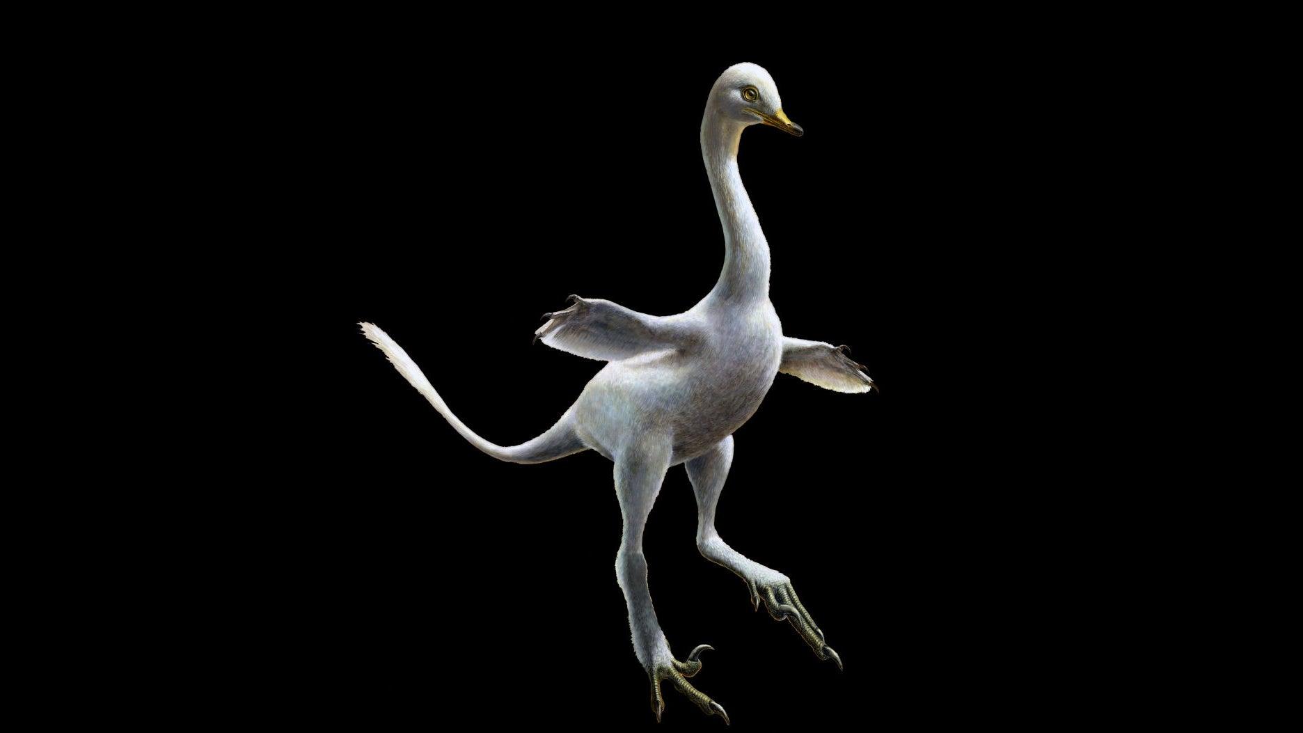 Freaky New Dinosaur Was Part Duck, Part Raptor