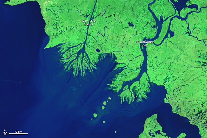 Strange New Land Is Growing Along Louisiana's Disappearing Coastline