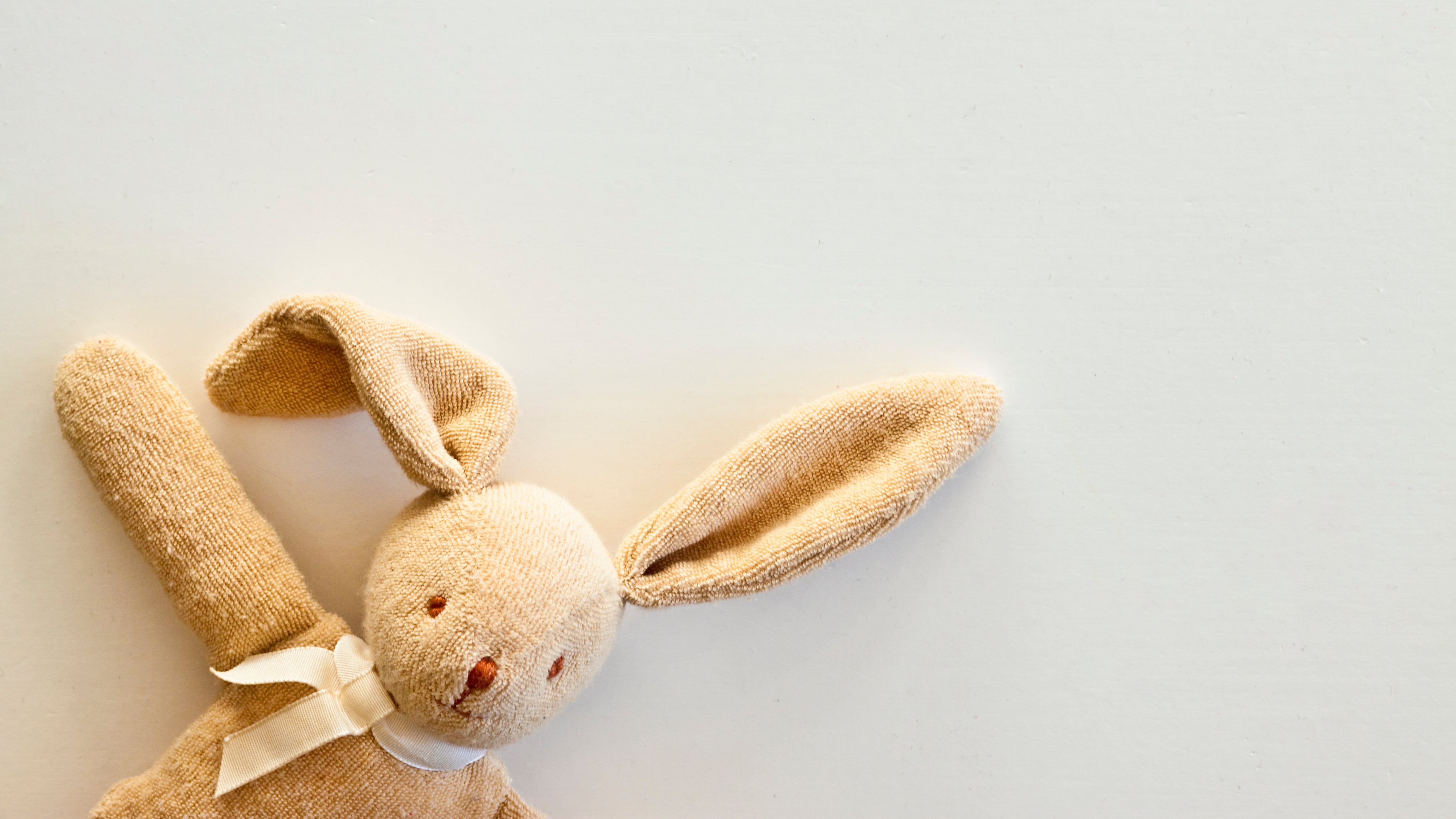 How To Find A Dupe Of Your Kid's Missing Stuffed Animal