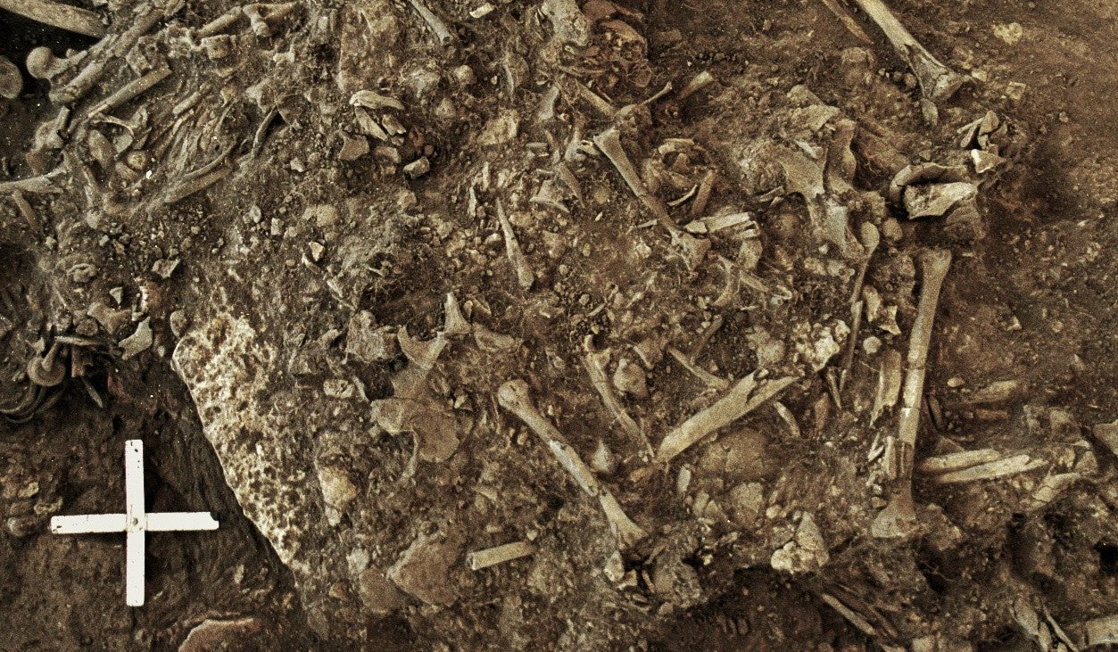 Ancient Black Plague Found In Swedish Gravesite