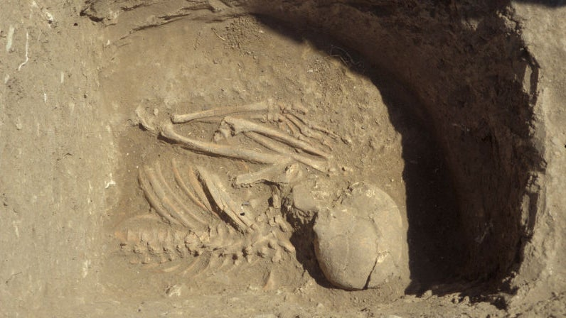 This Neolithic Graveyard May Solve Mystery of How Ancient Europe Started Farming