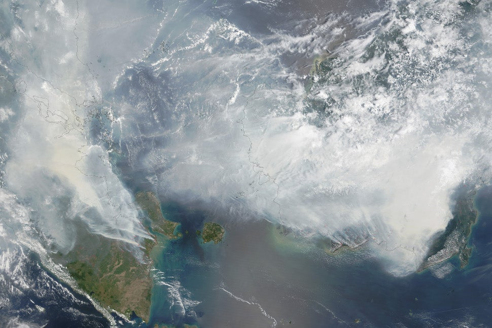 Fires Caused These Massive Plumes of Carbon Monoxide to Appear Over Indonesia