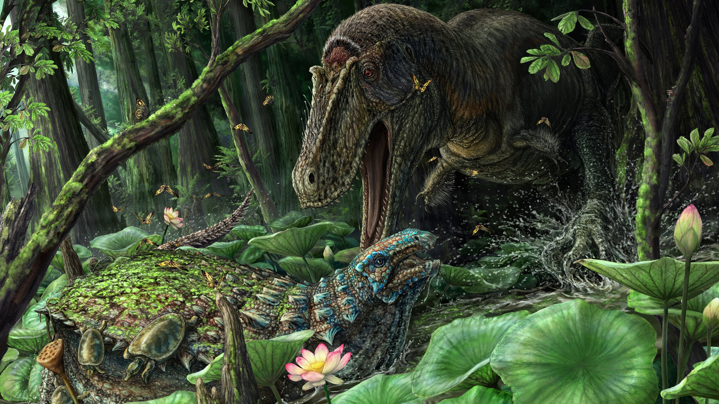 Rare T. Rex Relative Discovered In New Mexico