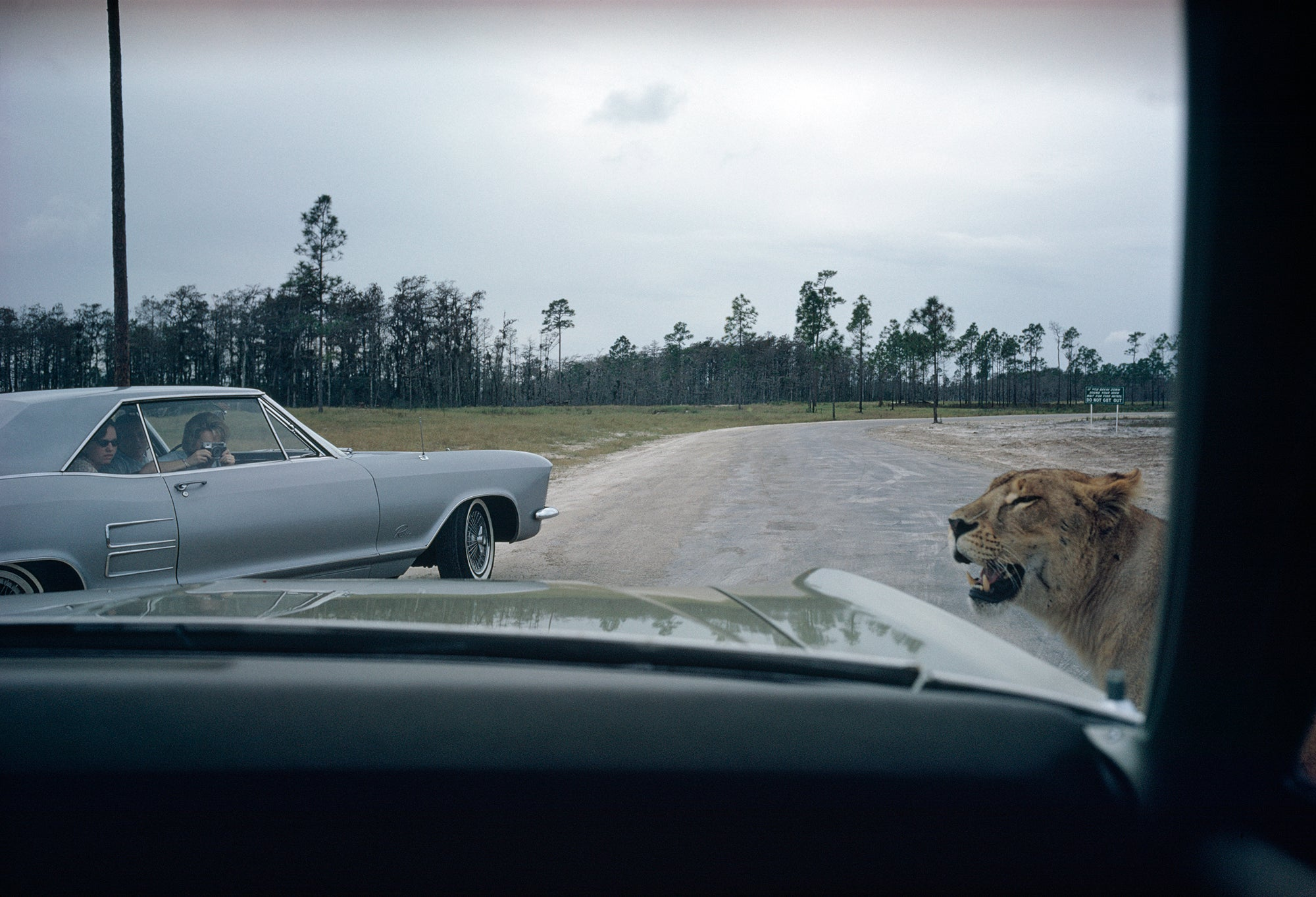 These Iconic Road Trips Make You Want To Grab a Camera and Just Drive