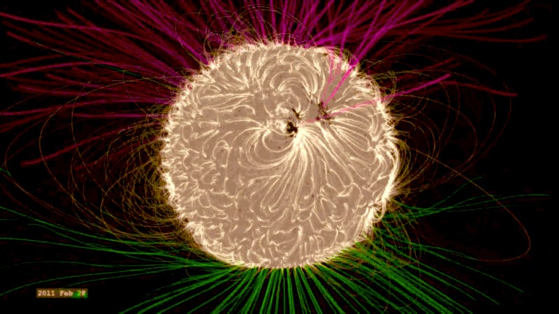 The Sun's Magnetic Field Is a Beautifully Complicated Riddle
