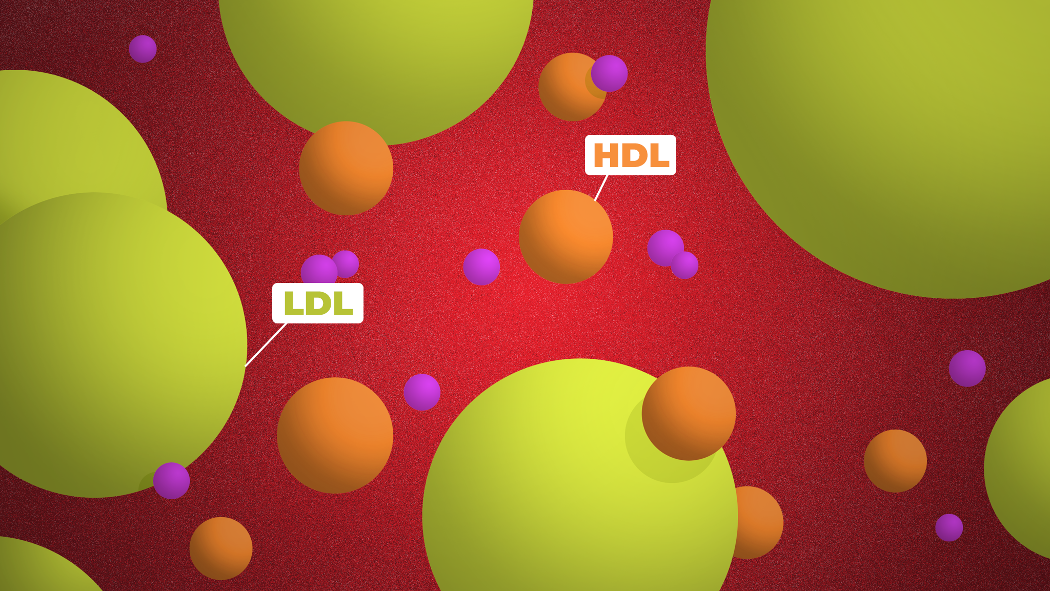 What Your Cholesterol Numbers Really Mean
