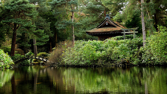 Four 'Confusing' Zen Quotes And What You Can Learn From Them