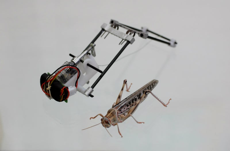 This Locust Robot Jumps 3m High and Could Scour Disaster Zones