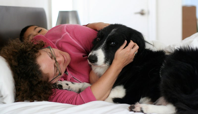 Your Dog Might Not Want A Hug, Here's How To Tell