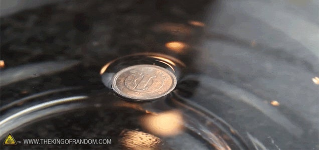 How to Make Metal Coins Magically Float on Water