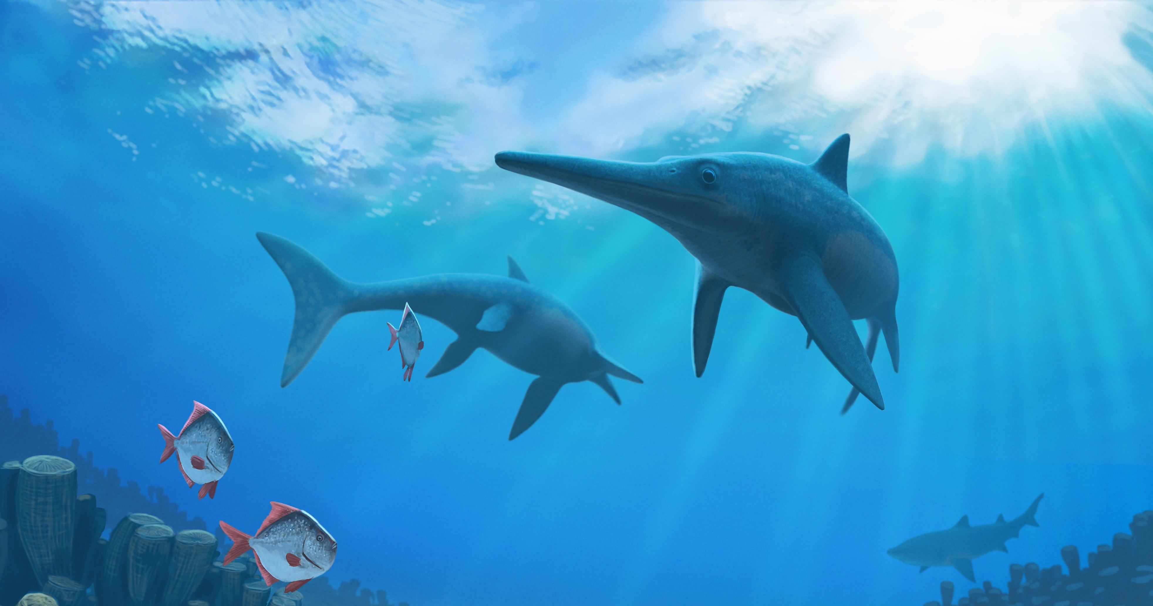 Dolphins Had A Jurassic-Era Reptile Twin Featuring Blubber And Warm Blood
