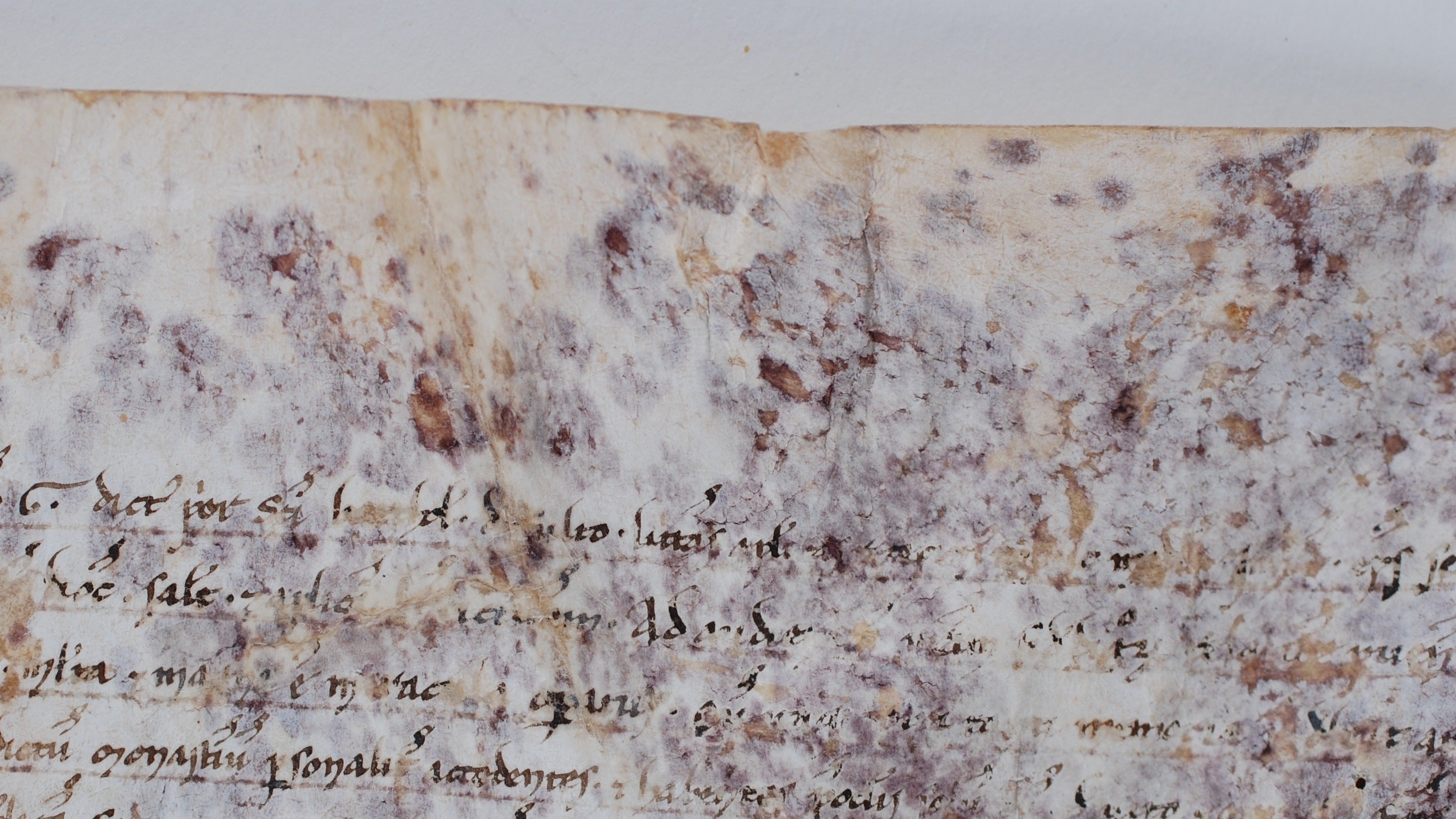 High-Tech Science Solves The Mystery Of 800-Year-Old Scroll