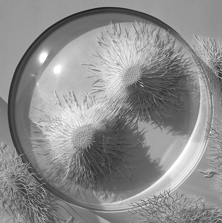 These Paper Models of Microbes and Cells Are Beautiful