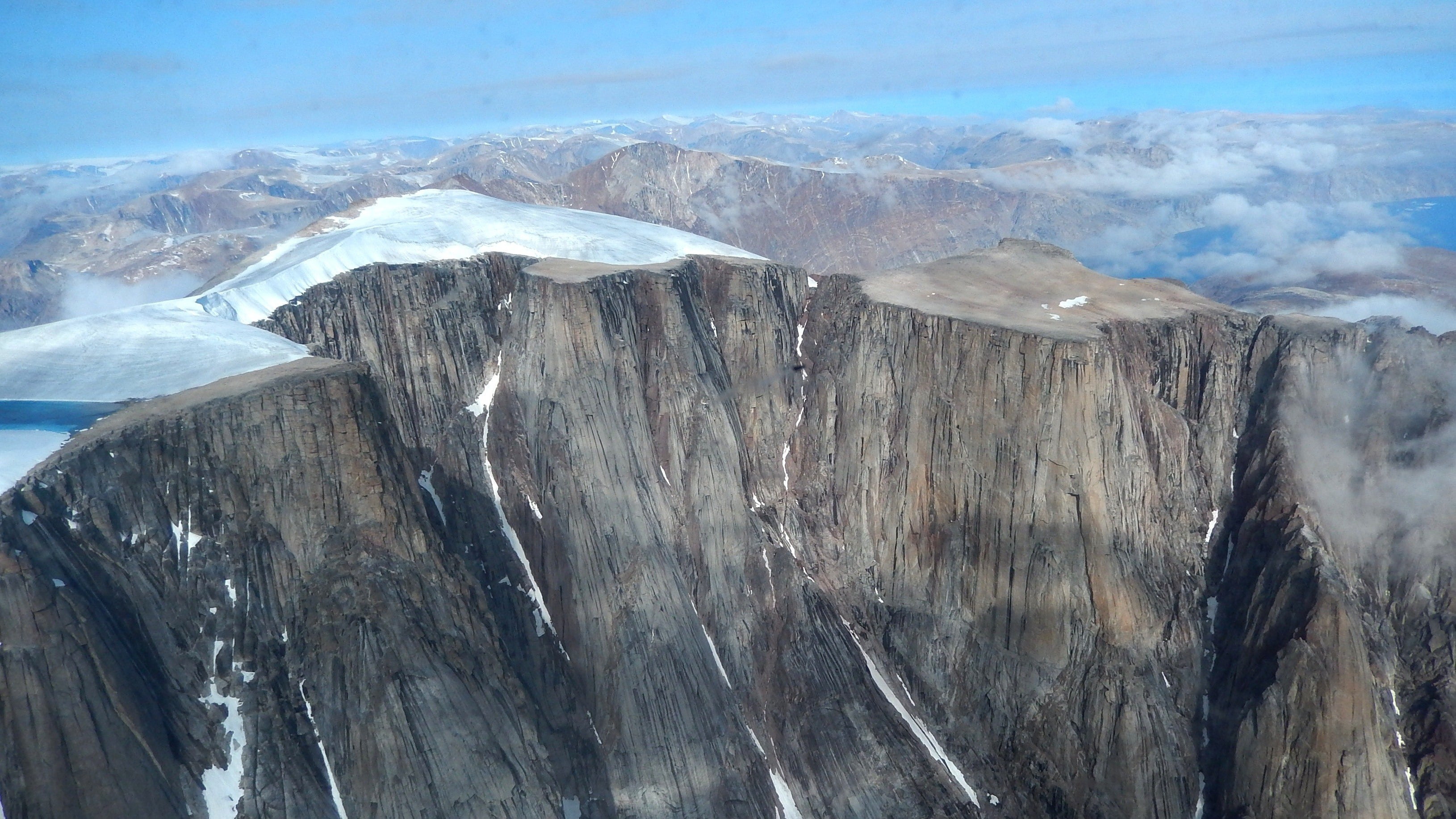 Ancient Plants RevealArctic Summers Haven't Been This Hot In 115,000 Years