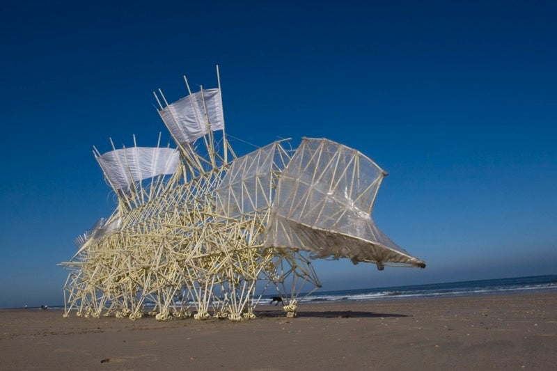 This Artist Builds Kinetic Sculptures That Run on Windpower and Evolve Like Living Beings