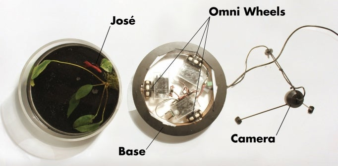 A Mobile Aquarium Steered By a Fish Named José