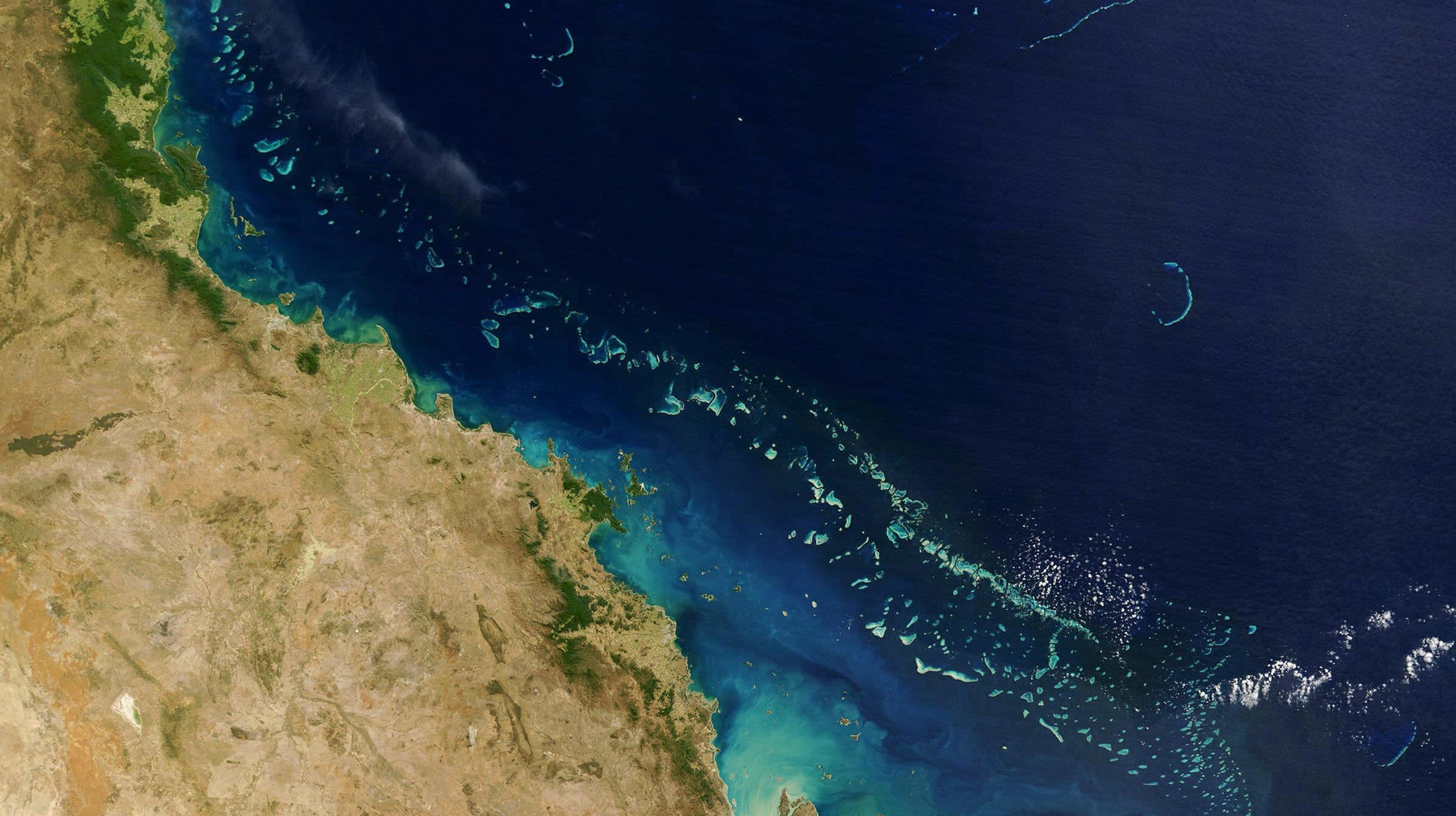 The Great Barrier Reef Faces Third Mass Bleaching Event In Five Years