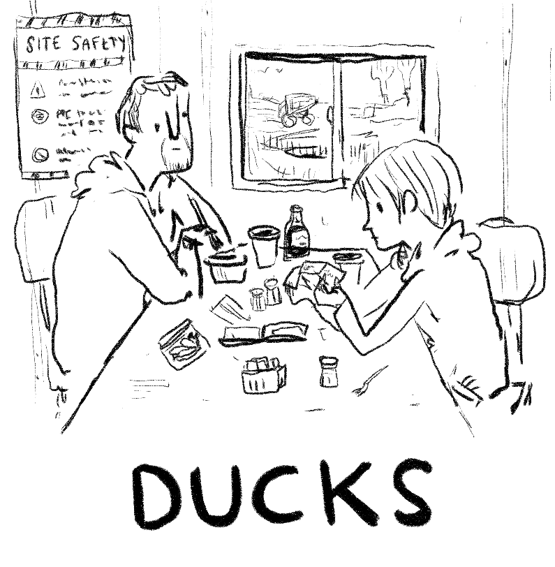 Here Is A Lovely Comic About Ducks