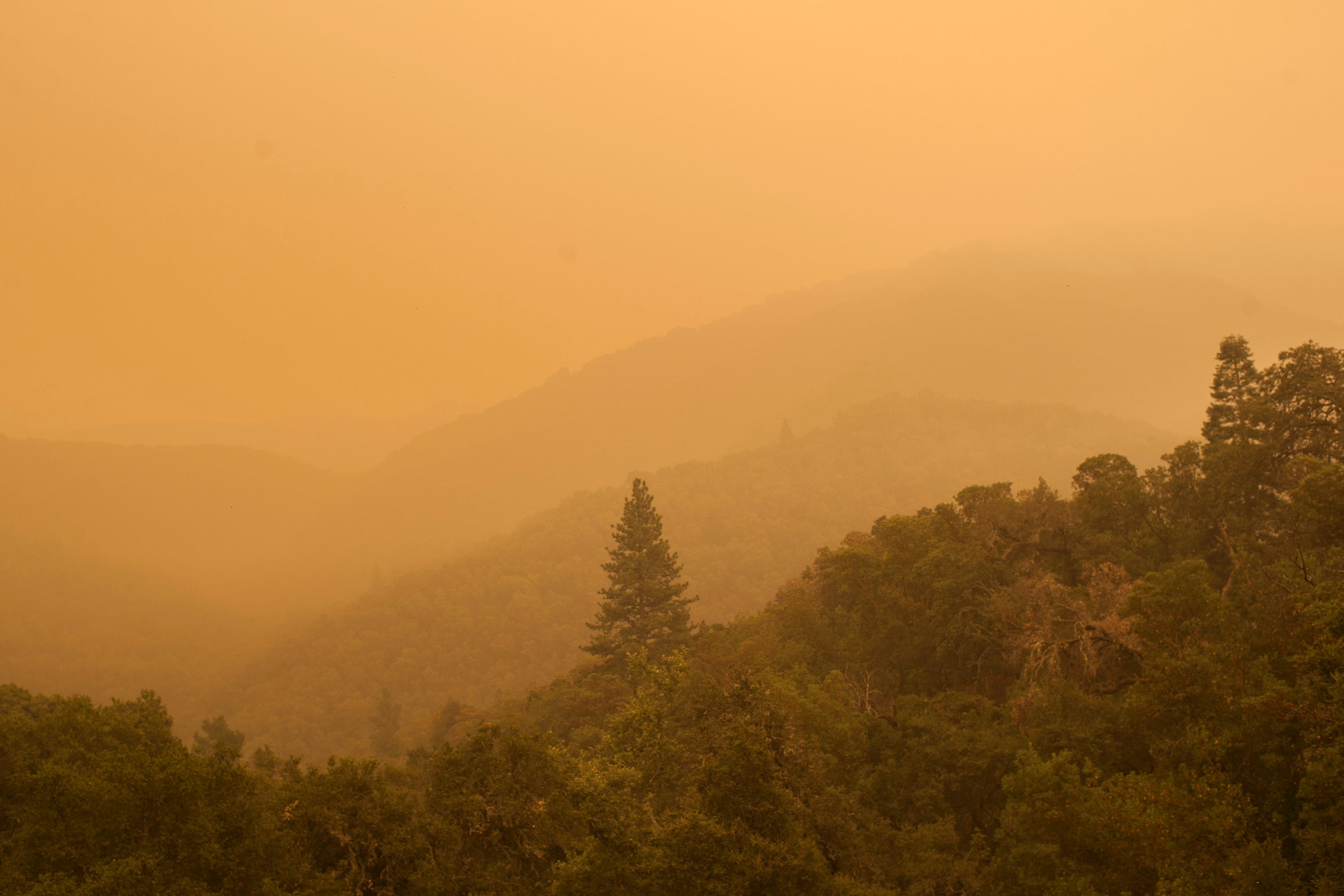 An Enormous California Bushfire Could Quadruple In Size