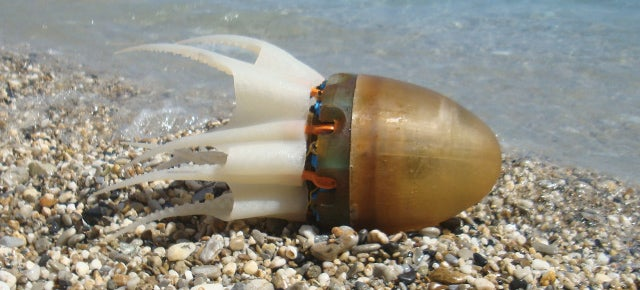 A Robotic Octopus Would Surely Be Captain Nemo's Worst Nightmare