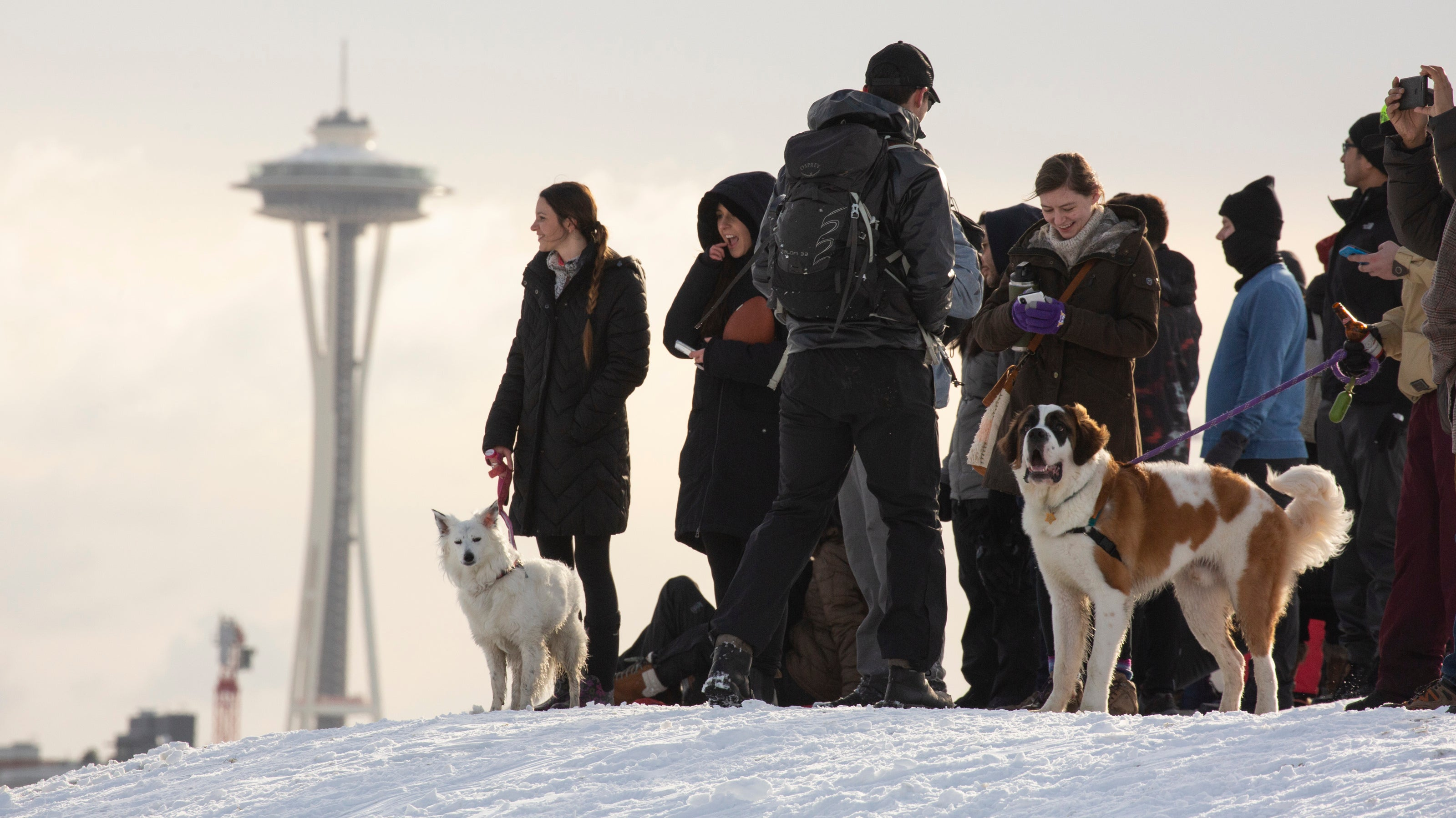 The Science Behind Seattle's Historic Snow