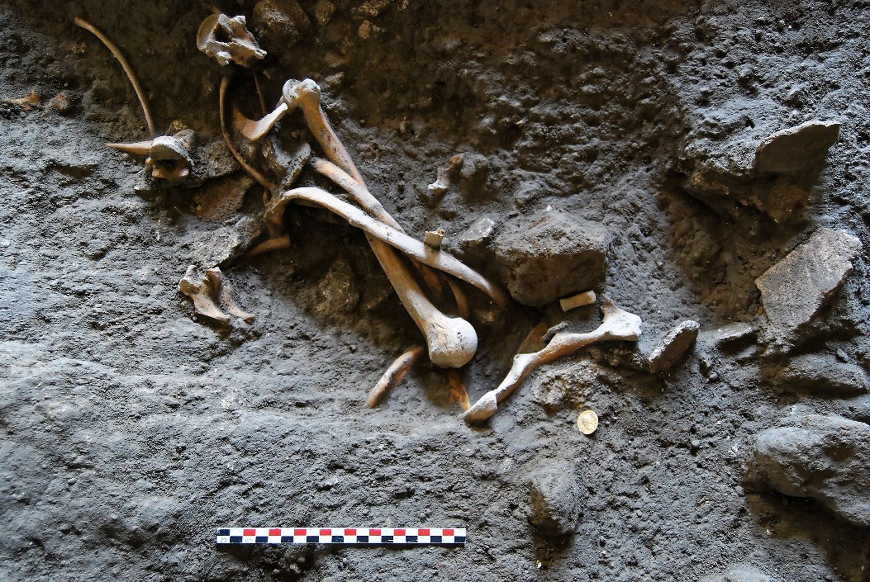Archaeologists Discover Skeletons in Ancient, Ransacked Shop Near Pompeii