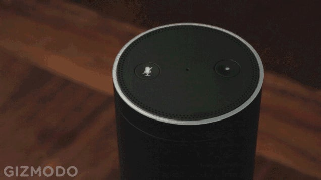 Report: Amazon's About to Release a Portable Version of Echo