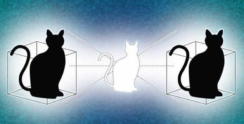 New Quantum 'Cat State' Can Be In Two Places At Once