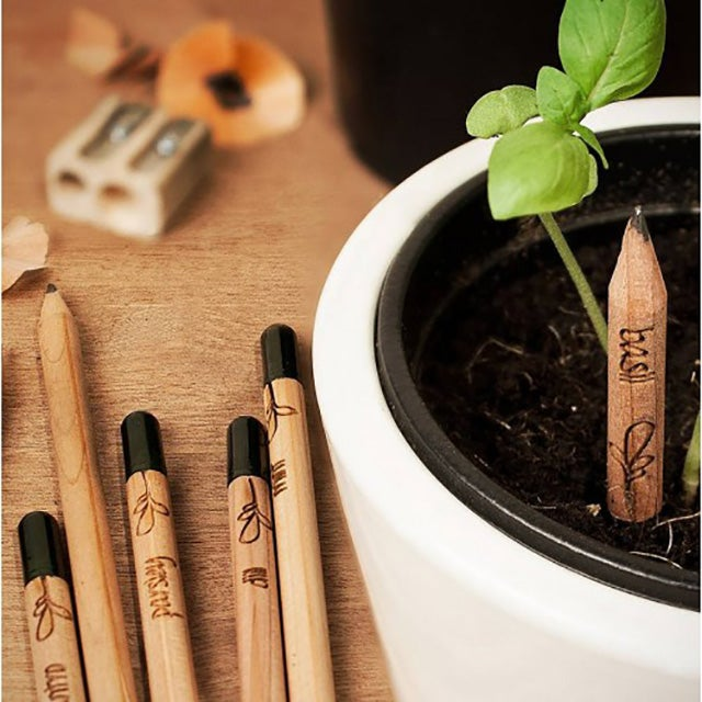 These Plantable Pencils Grow Fresh Herbs From Your Failed Lit Ambitions