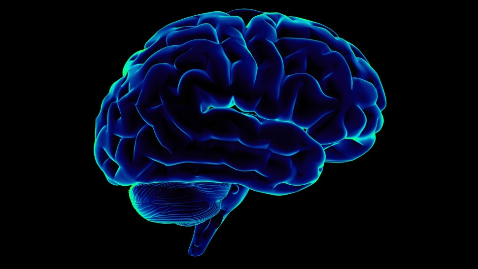 Neuroscientists Translate Brain Waves Into Recognisable Speech