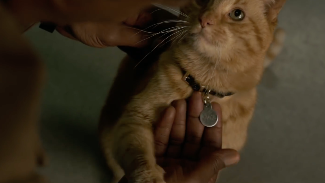 NewCaptain Marvel Posters Feature The MCU's Hero Pet And Some Faces From The Uncanny Valley