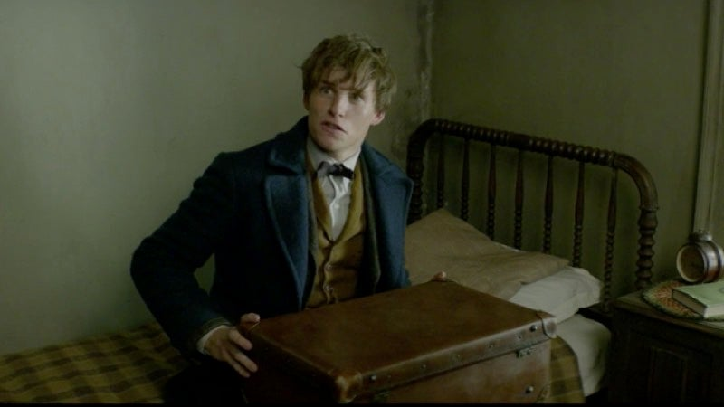 Newt Scamander Magically Tidies Up A Disaster Area In This Weirdly Satisfying Fantastic Beasts Clip