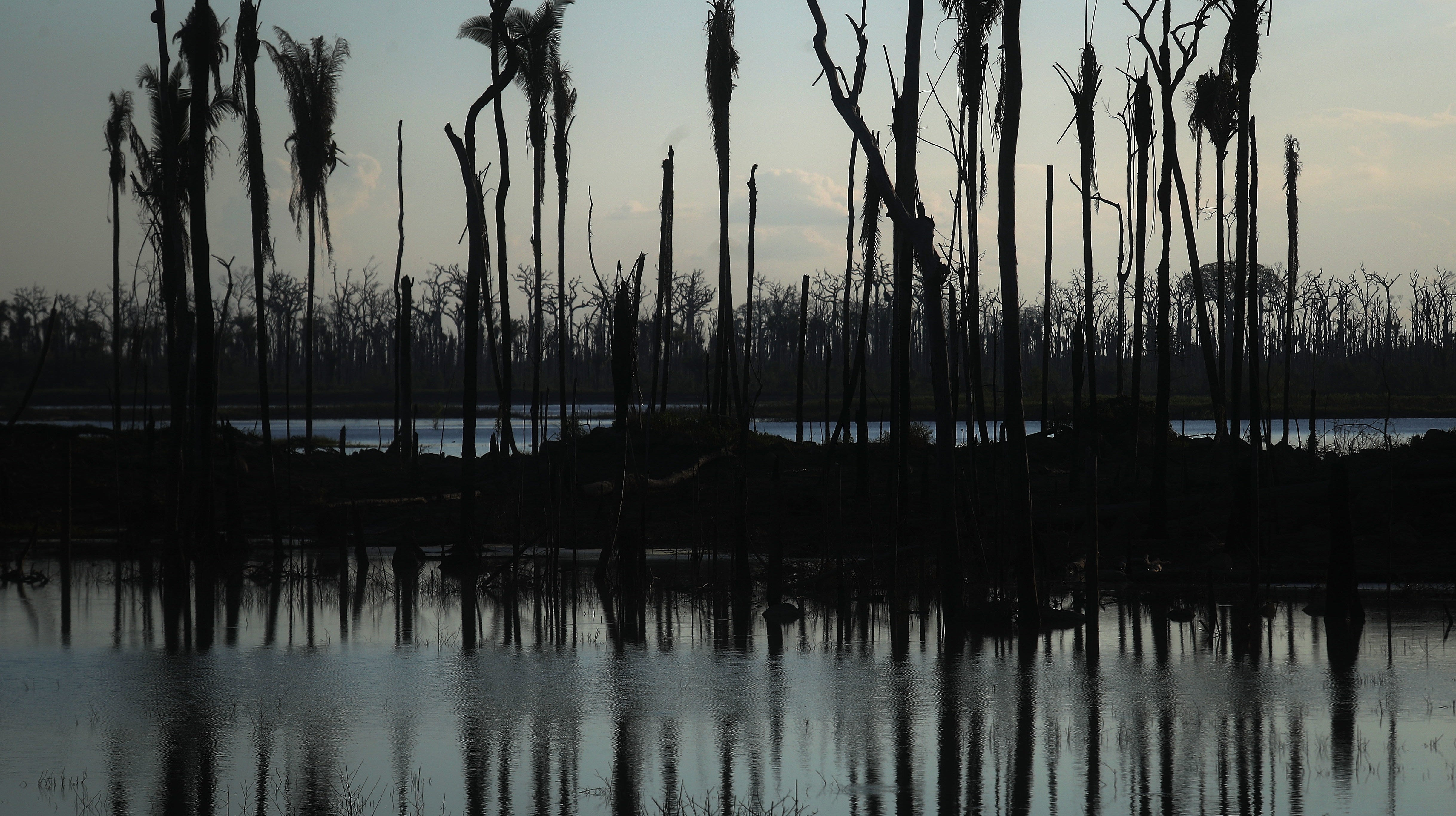 Big Donors Are Pulling Out Of Brazil's Amazon Fund; That Could Spell Trouble For The Rainforest
