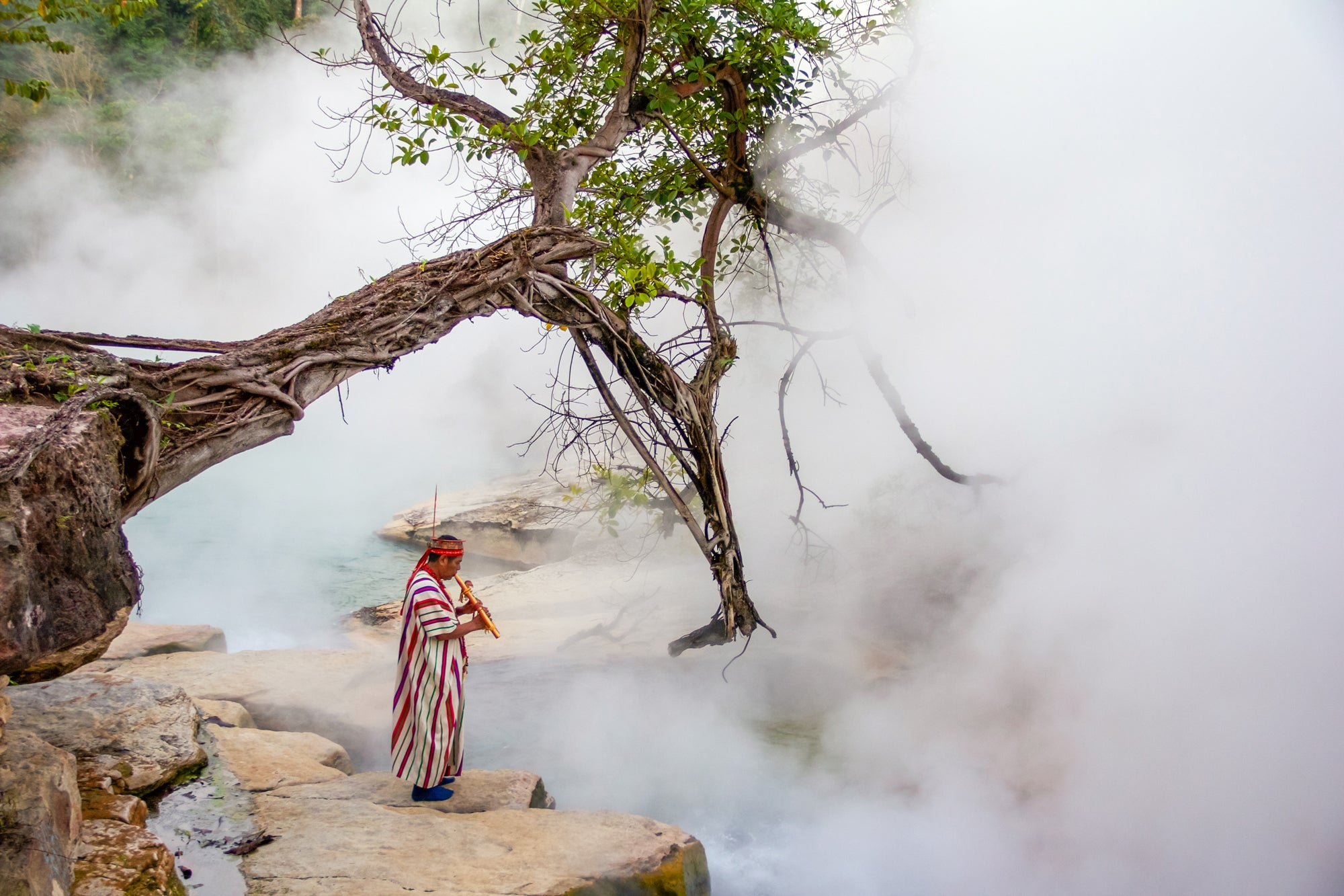 Scientists Discover a Boiling River of Amazonian Legend