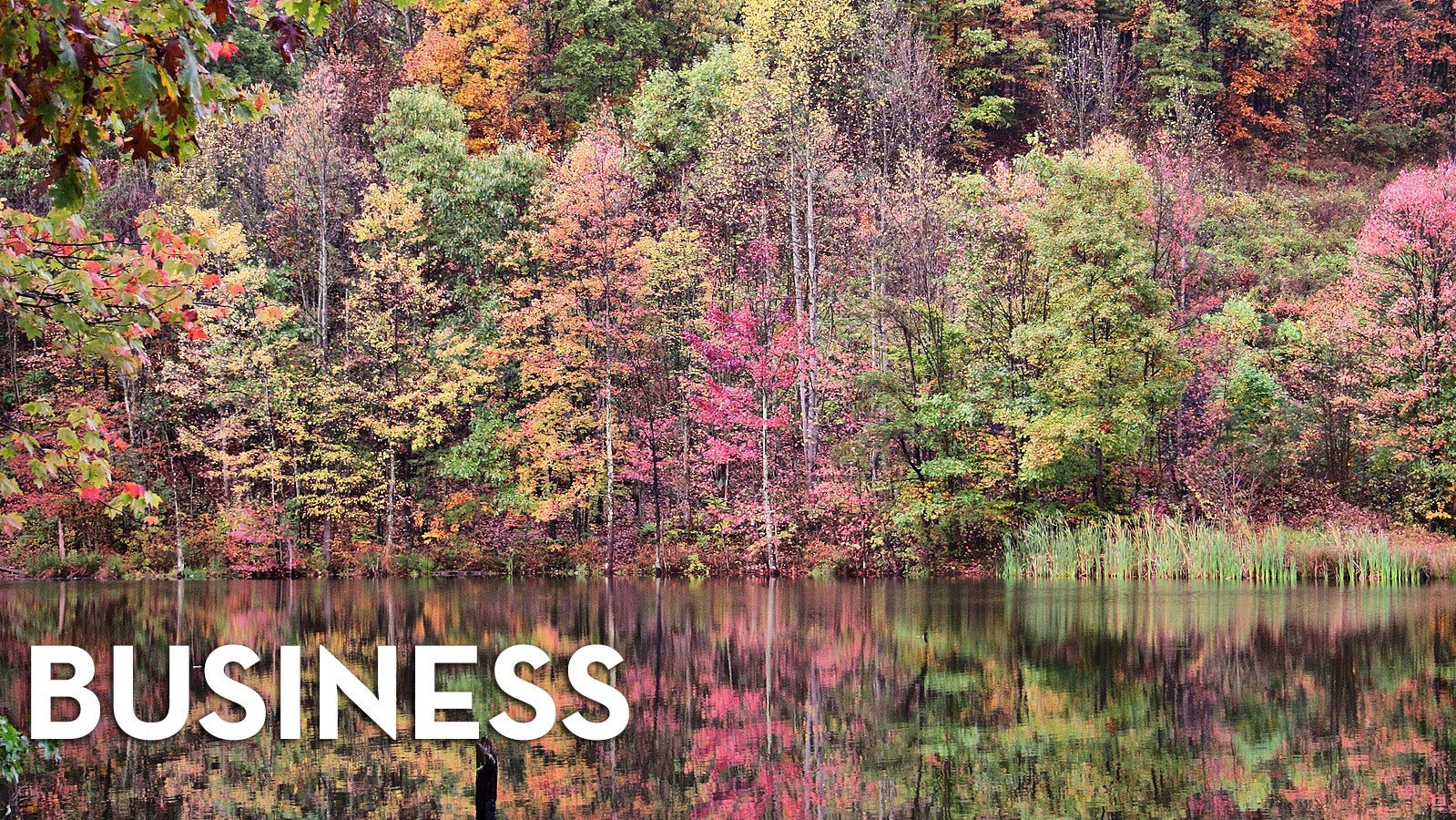 This Week In The Business: The Changing Season