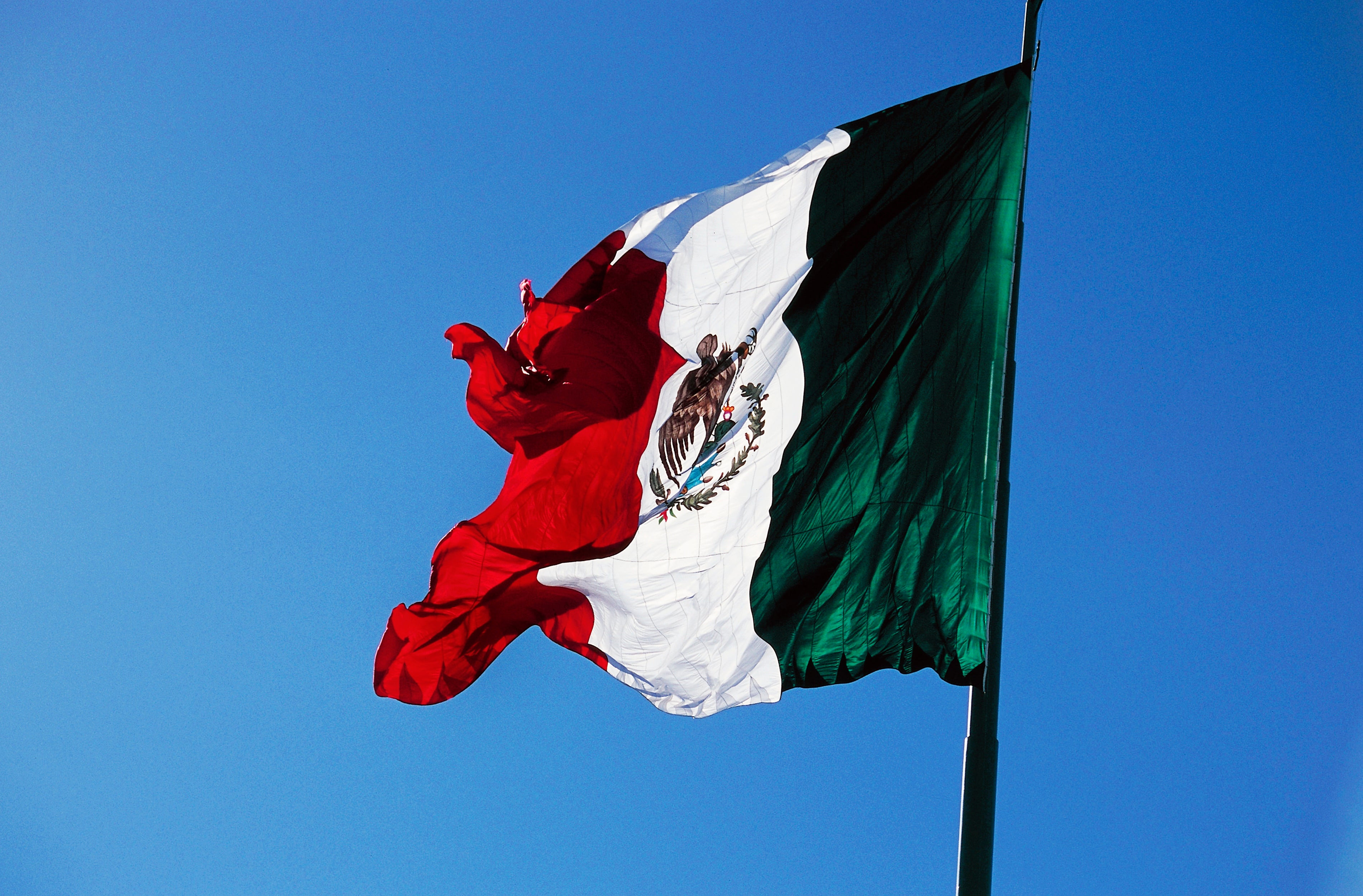 Mexico's Entire Voter Database Was Leaked to the Internet