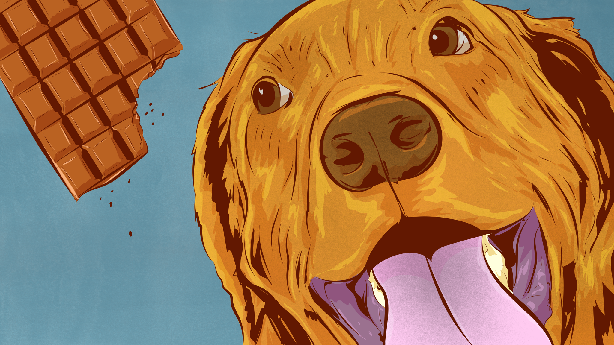 5 Foods You Should Never Feed To Dogs