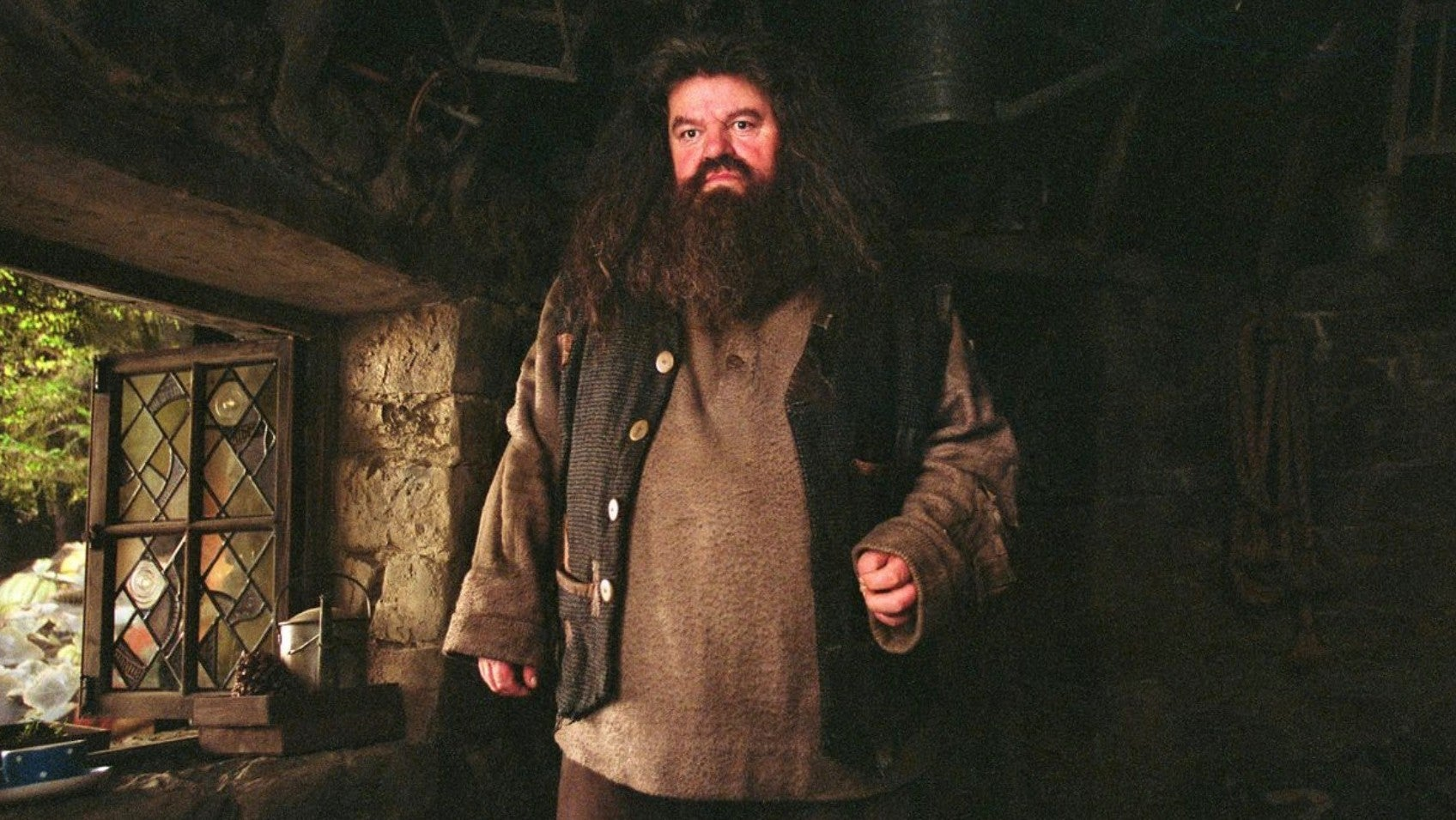 The New Harry Potter Ride Will Feature One Of Hagrid's Unique Creatures That Wasn't In The Movies