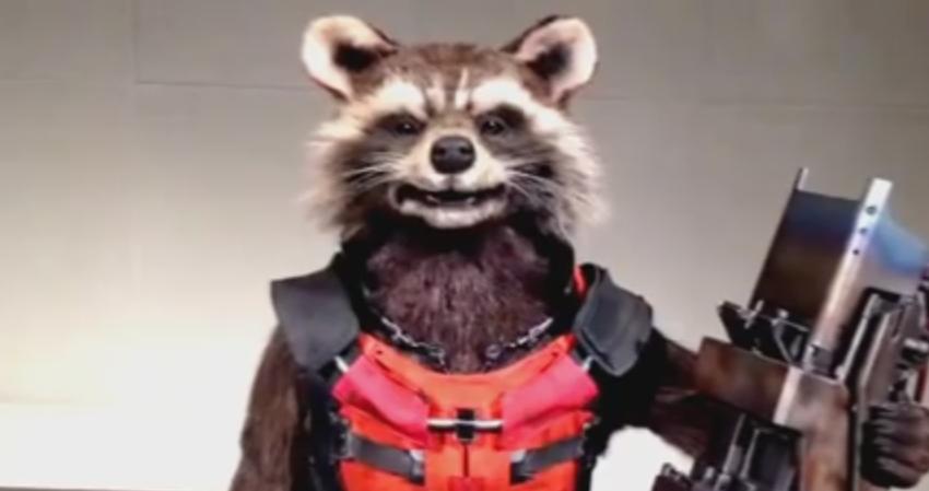 Watch Japan's Talking Animatronic Rocket Raccoon