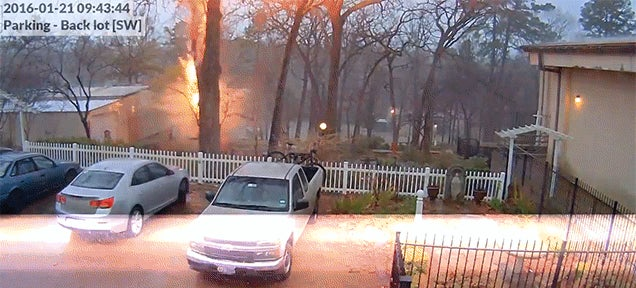 Here's a Lightning Bolt Striking and Destroying a Tree