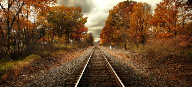 Trains Could Get Lasers To Burn Slippery Wet Leaves Off the Tracks