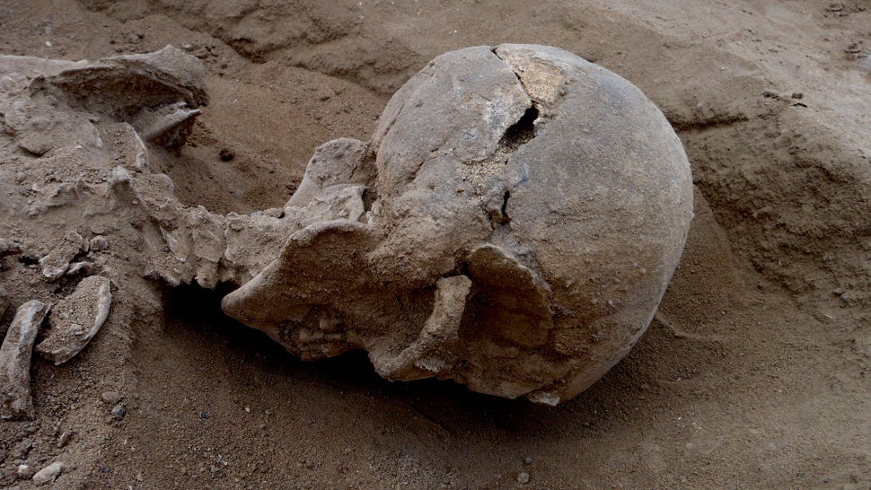 Discovery of Brutal Massacre Pushes Back History of Human Warfare