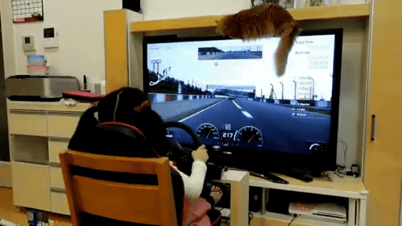 For A 5-Year-Old, This Kid Is Pretty Good At Gran Turismo