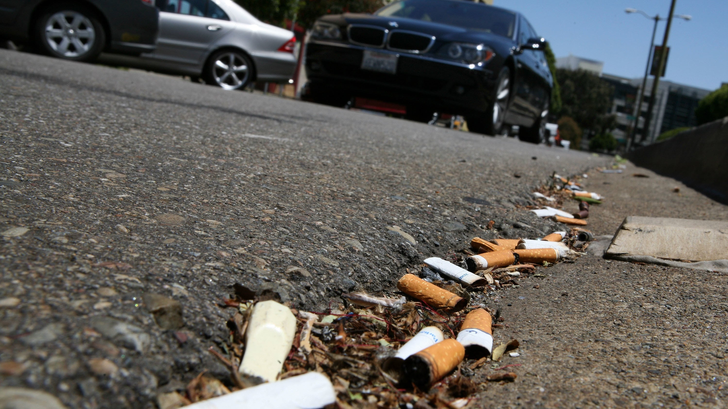 Filtered Cigarettes Are One Of The Worst Types Of Pollution And We Should Ban Them, Experts Argue