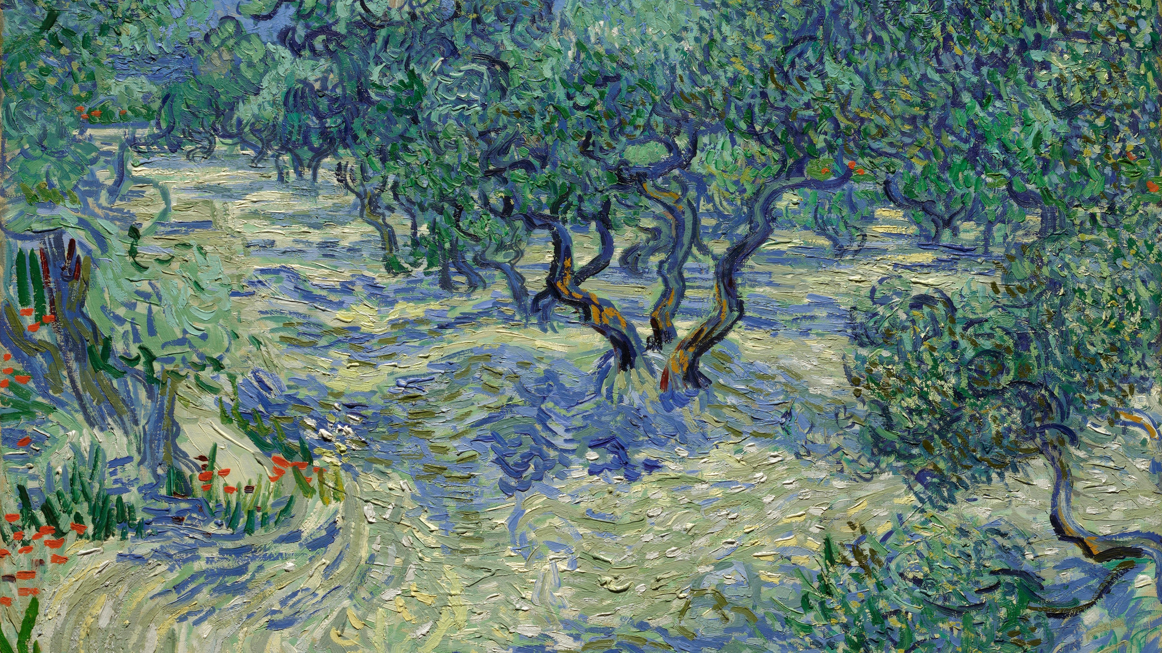 Researchers Find Grasshopper Stuck In Classic Van Gogh Painting