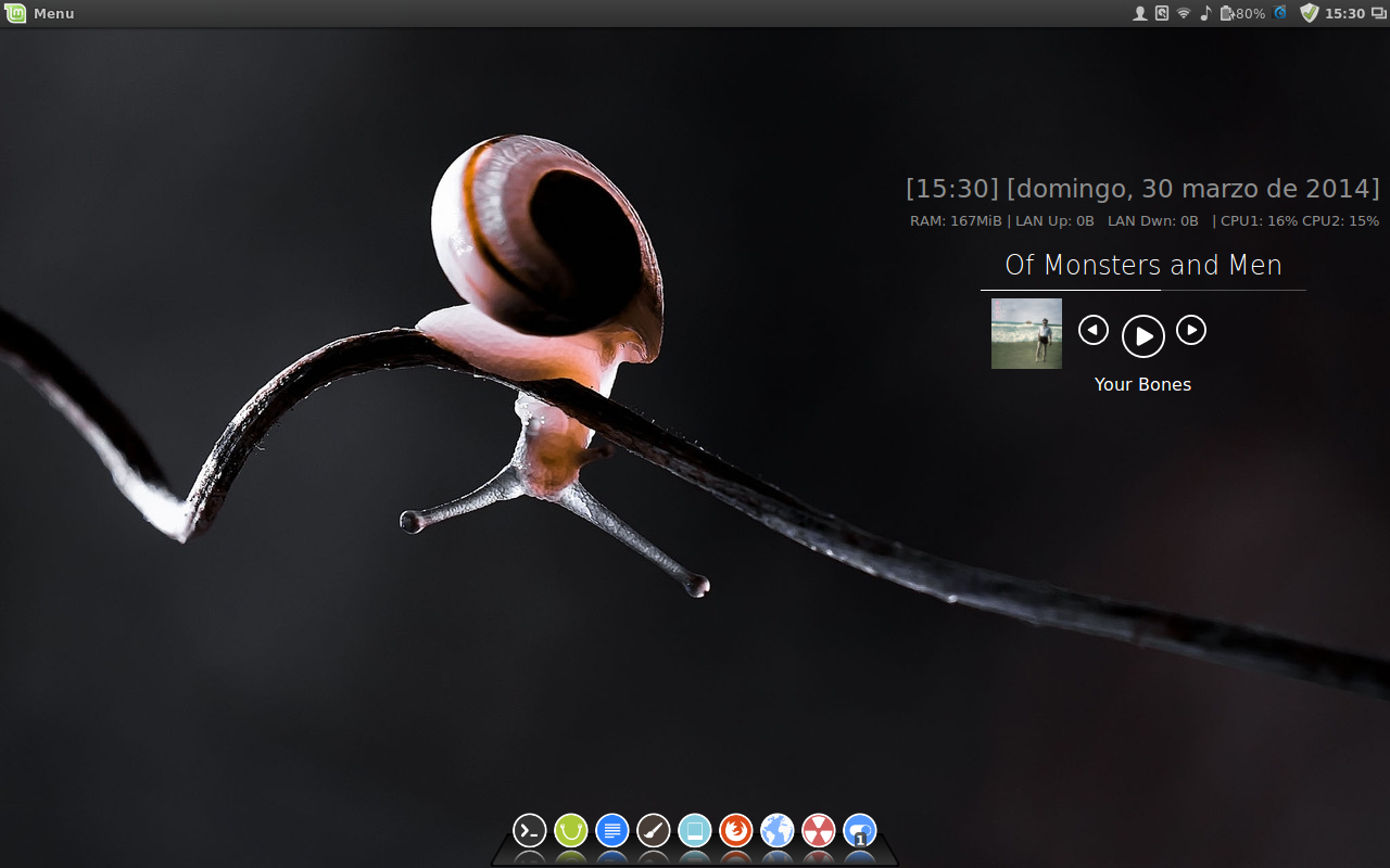 The Slowmo Linux Desktop