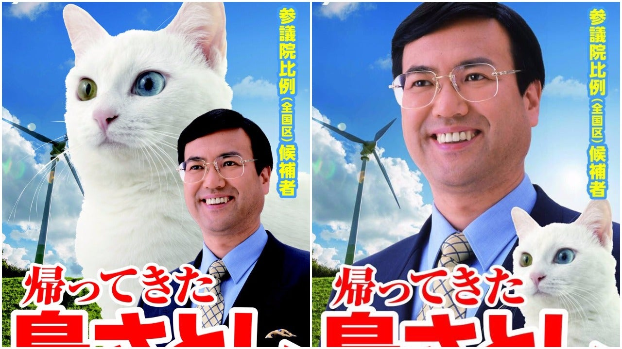Japanese Politician Campaigns With A Cat