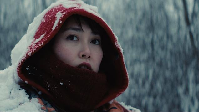 The Real Story Behind Kumiko: The Treasure Hunter