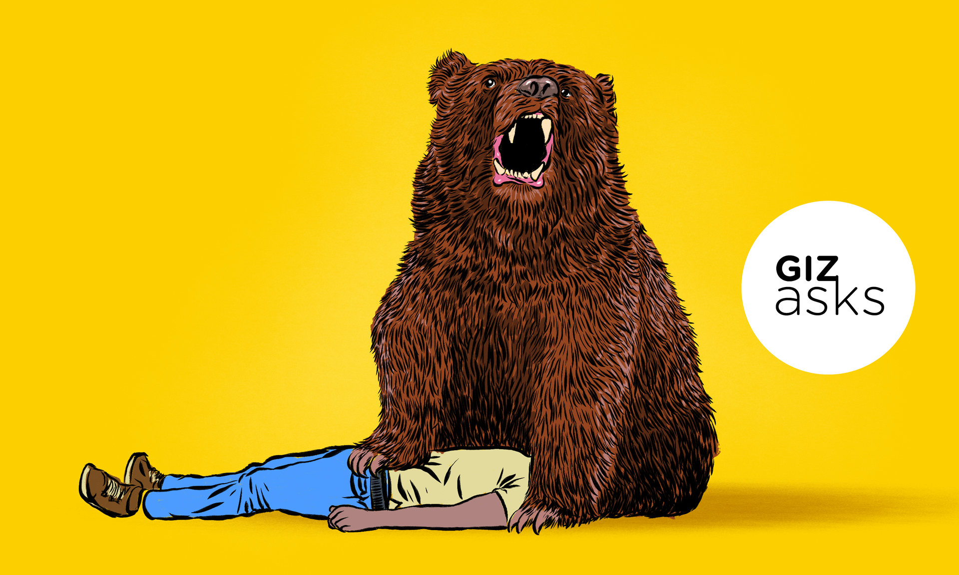 Can You Be Friends With A Bear?